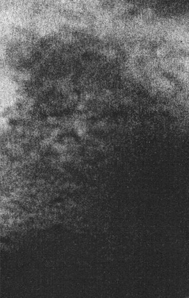 eco_015: Zoul – The Oriel