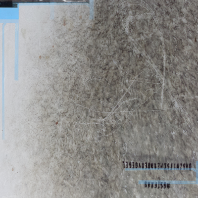 eco_079 Daszwitscherndervögel - Mostfrau (Digital Cover)