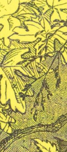 Salt (Detail 2)