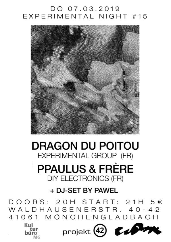 Experimental Night #15 –DRAGON DU POITOU / PPAULUS & FRÈRE